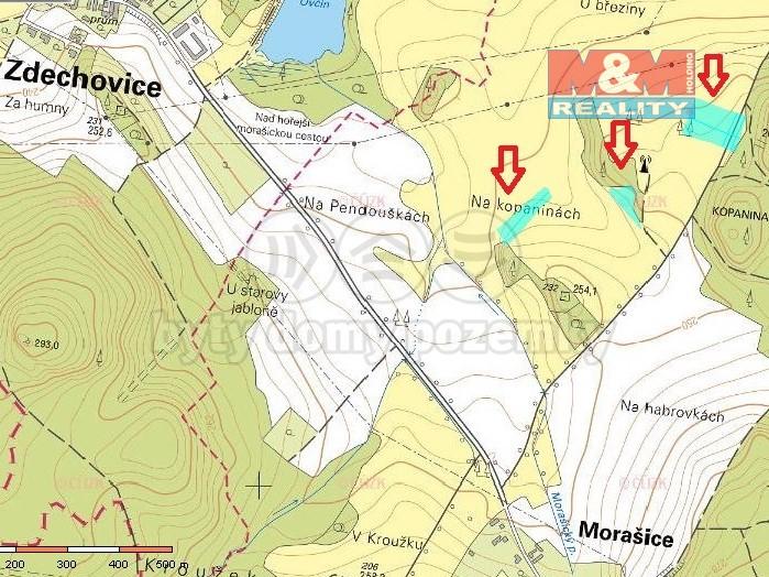 Prodej louky, 12925 m², Morašice