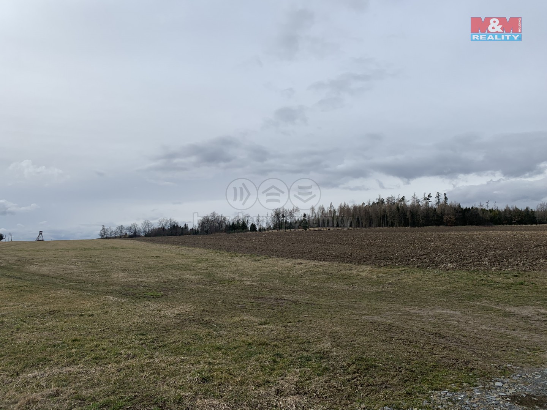 Prodej pole, 71218 m², Staré Těchanovice
