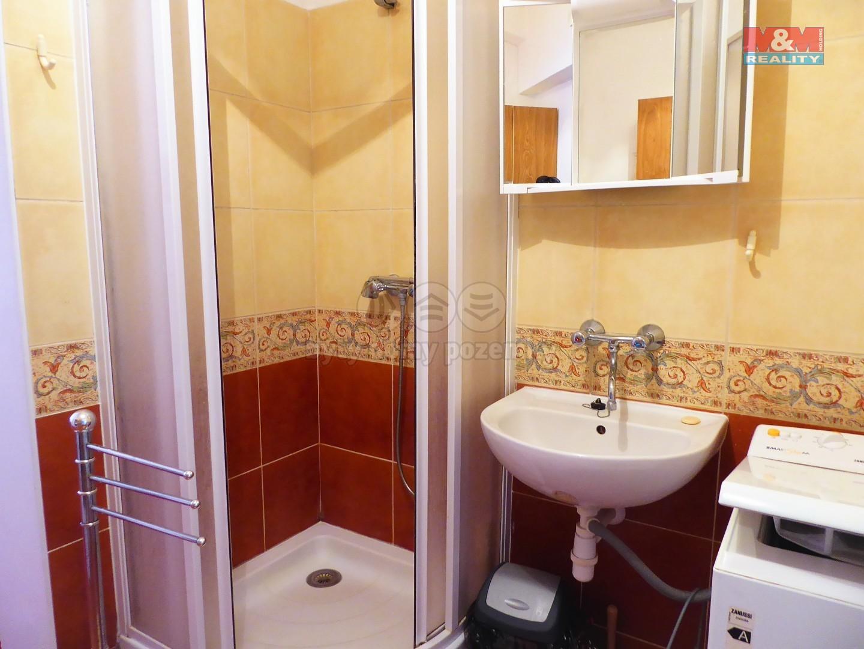 Pronájem bytu 2+1, 43 m², Karlovy Vary, ul. Škroupova