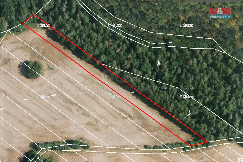 Prodej orné půdy, 2748 m², Bernardov