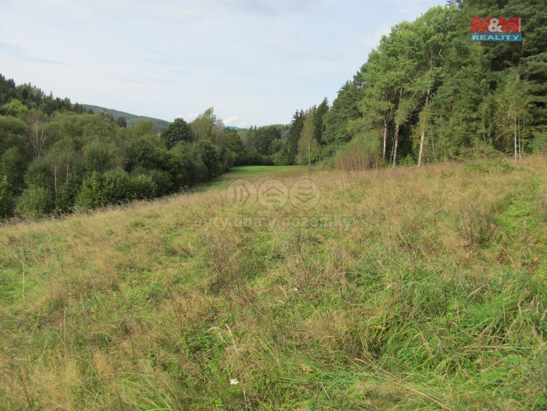 Prodej pozemku k bydlení, 65564 m², Kájov