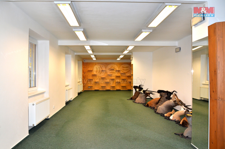 Pronájem obchod a služby, 124 m², Opava, ul. U Pošty