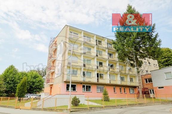 Pronájem kancelářského prostoru, 300 m², Šilheřovice