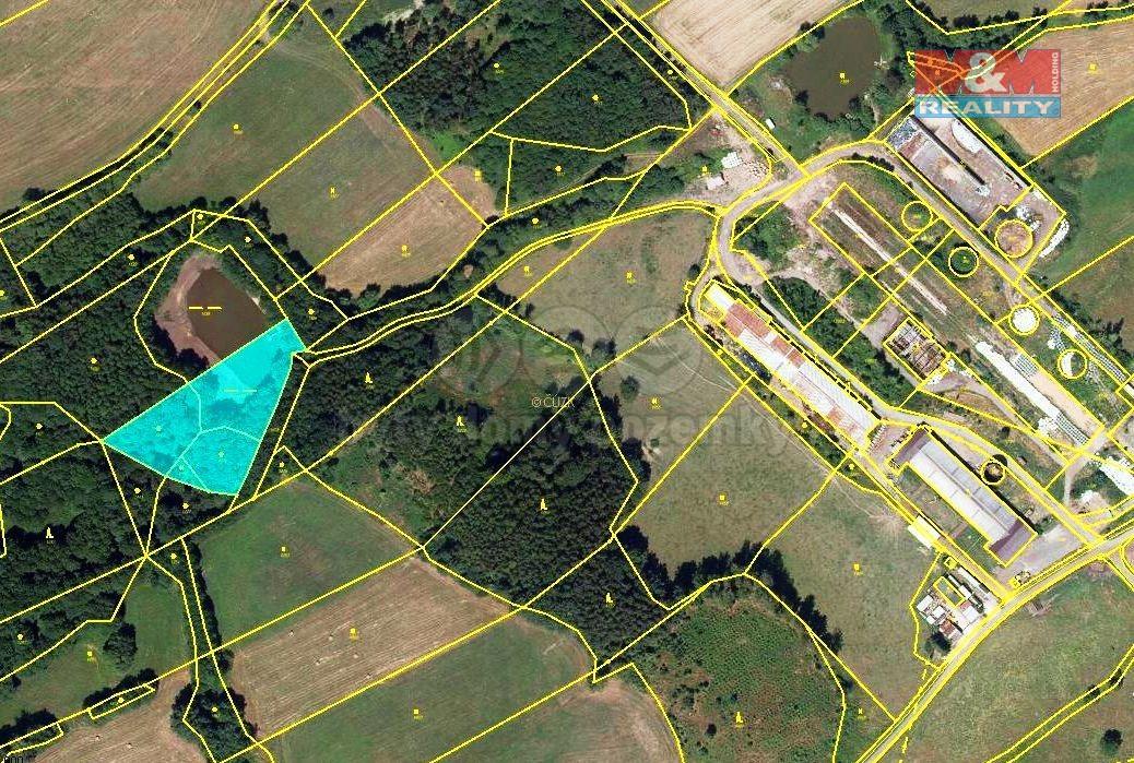 Prodej louky, 3789 m², Dolní Brusnice