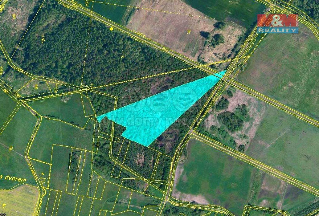 Prodej lesa, 19019 m², Mažice