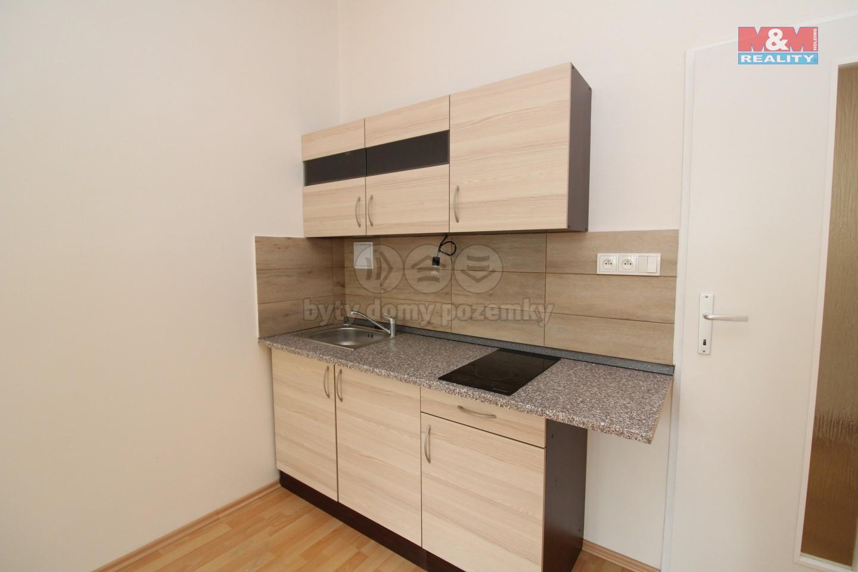 Pronájem bytu 2+kk, 51 m², Praha 7, ul. Na Maninách