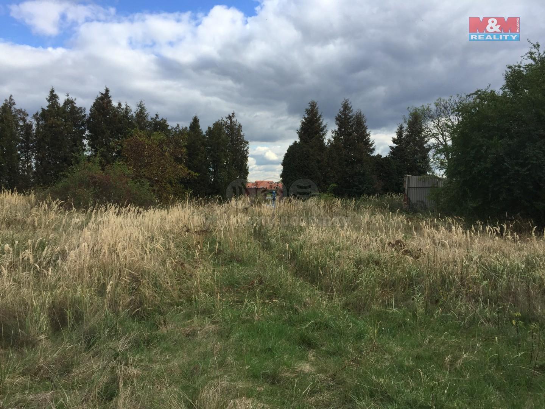 Prodej pozemku k bydlení, 1906 m², Jesenice, ul. Budějovická