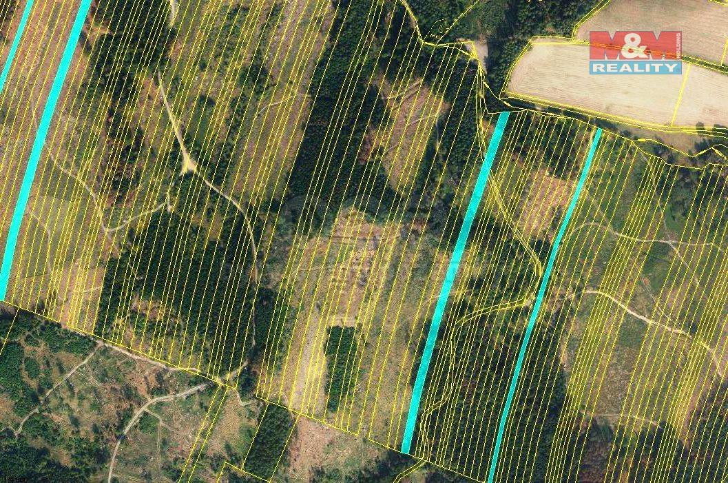 Prodej lesa, 28654 m², Nová Hradečná