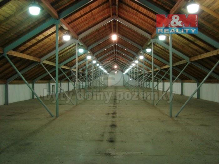 Pronájem skladu, 1138 m², Velké Hoštice, ul. Opavská