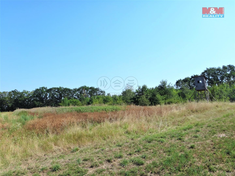 Pronájem pole, 5000 m², Malé Přítočno
