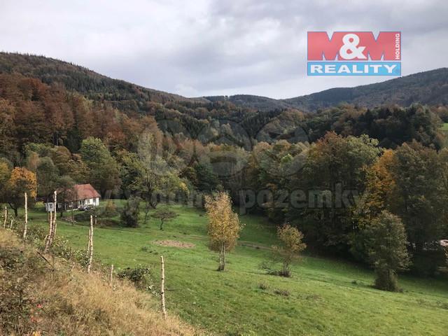 Prodej lesa, 27814 m², Morávka
