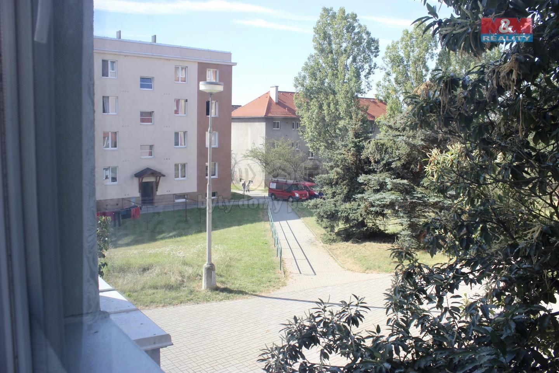 oknem.jpg