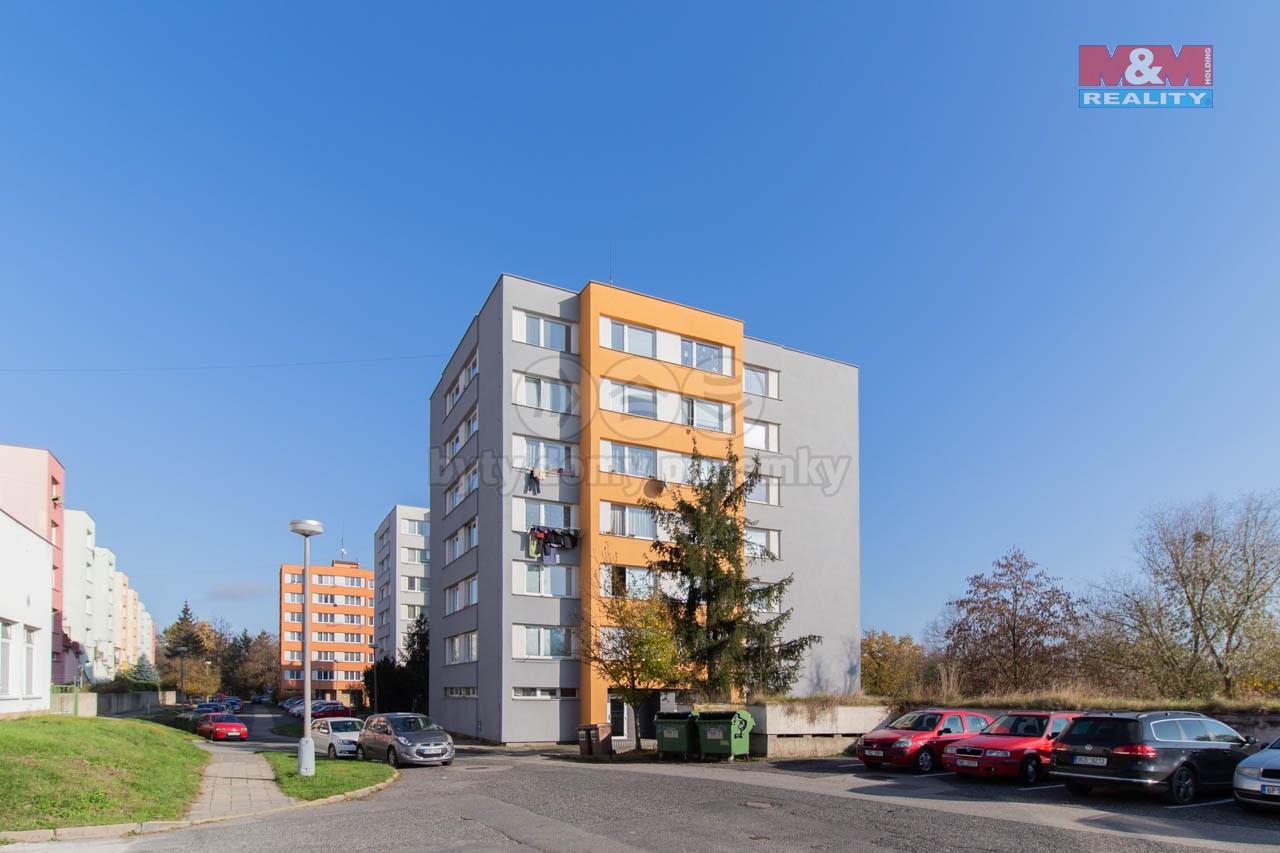Prodej bytu 3+kk, 52 m², Strakonice, ul. Mlýnská