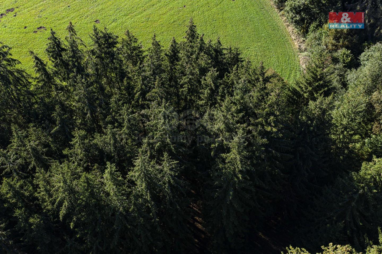Prodej lesa, 7539 m², Kladno