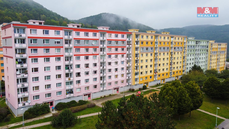 Prodej bytu 1+1, 36 m², Ústí nad Labem, ul. Peškova