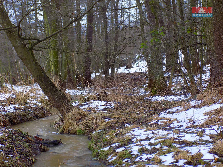 Prodej lesa, 4939 m², Petřvald