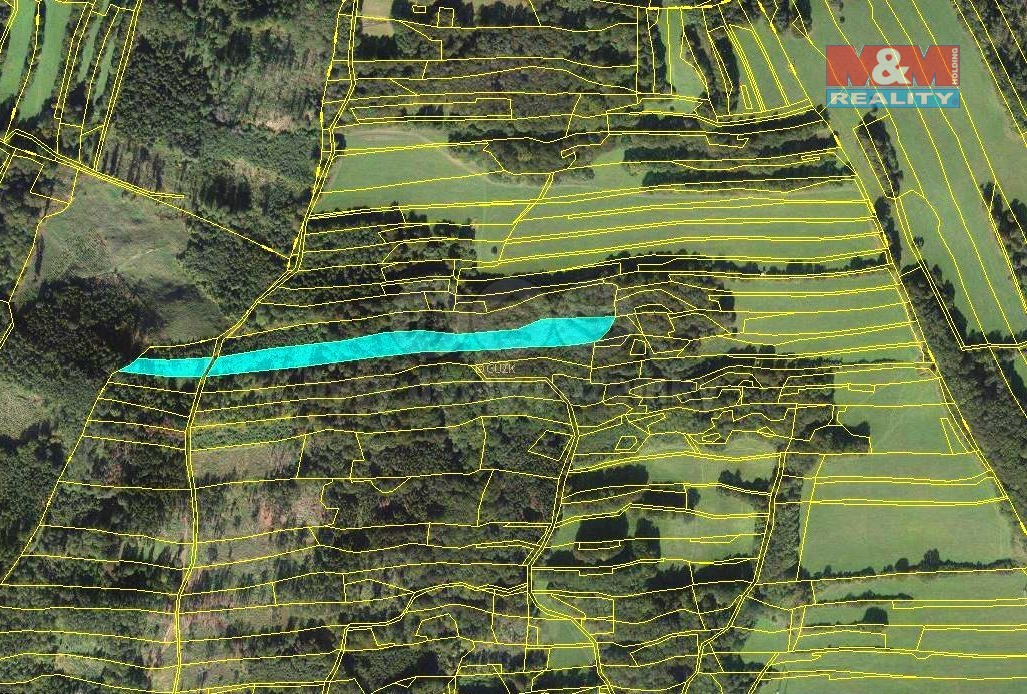 Prodej lesa, 10970 m², Lešná-Jasenice