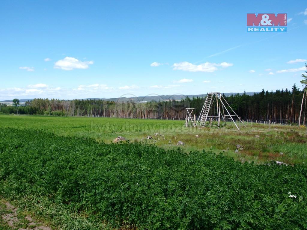 Prodej, les, 24632 m2, Horní Hradiště u Plas