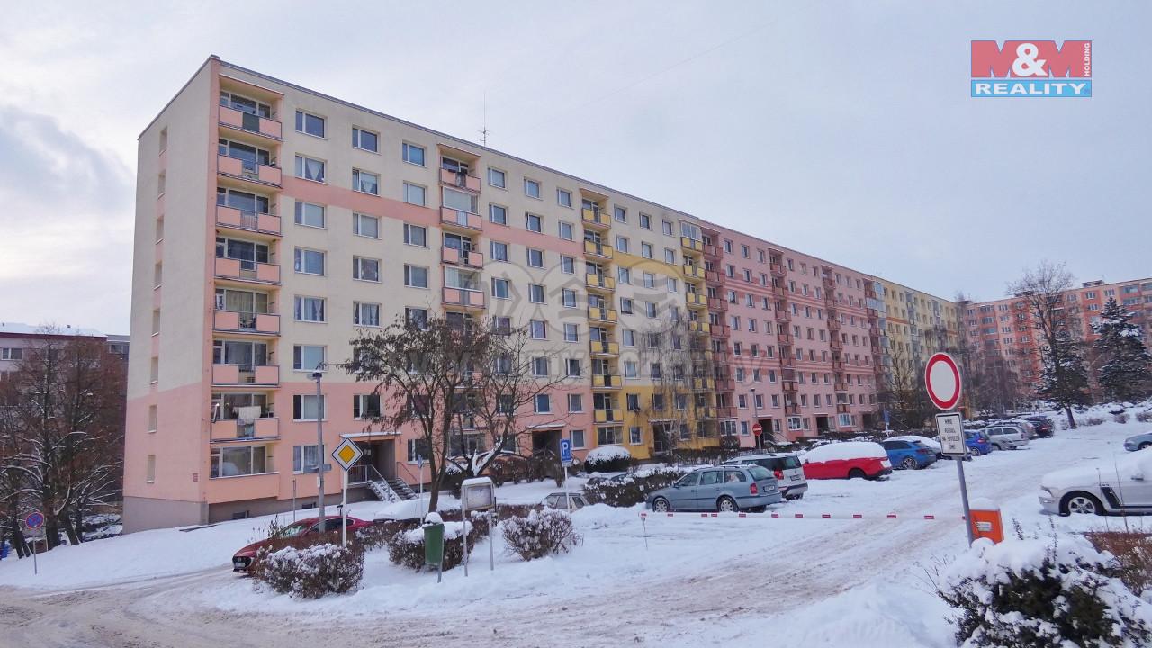 Pronájem bytu 1+kk, 19 m², Ústí nad Labem, ul. Glennova