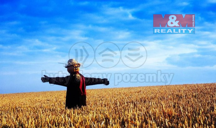 Prodej, pole, 117 000 m2, Lodhéřov