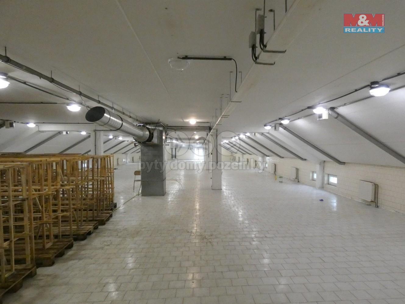 Prodej výrobního objektu, 6498 m², Lichnov