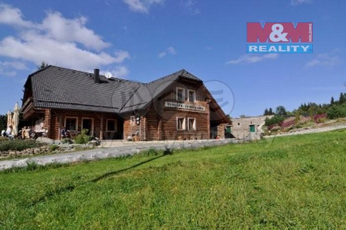 Prodej, penzion, 630 m2, Hojsova Stráž