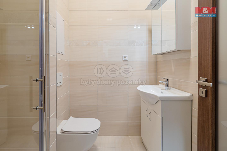 Prodej bytu 1+kk, 43 m², Praha 8, ul. Prosecká