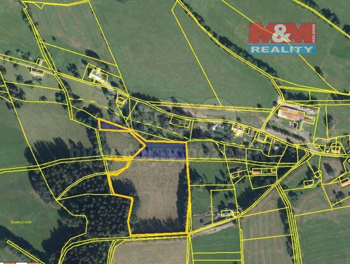 Prodej pozemku, 16559 m², Rokytnice nad Jizerou - Františkov