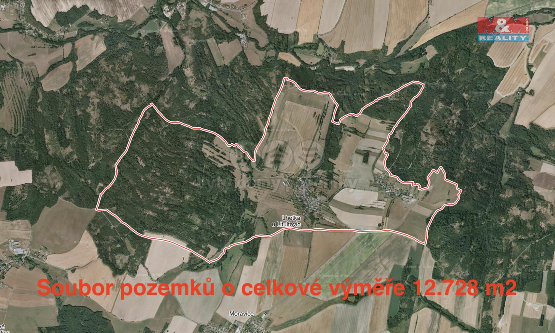 Prodej, louka, 12728 m2, Lhotka u Litultovic