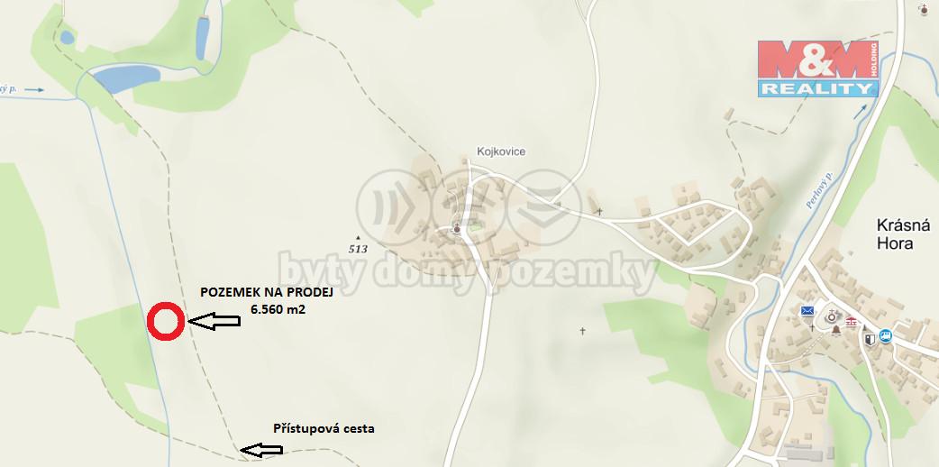 Prodej, zemědělský pozemek, 6560 m2, Krásná Hora - Kojkovice