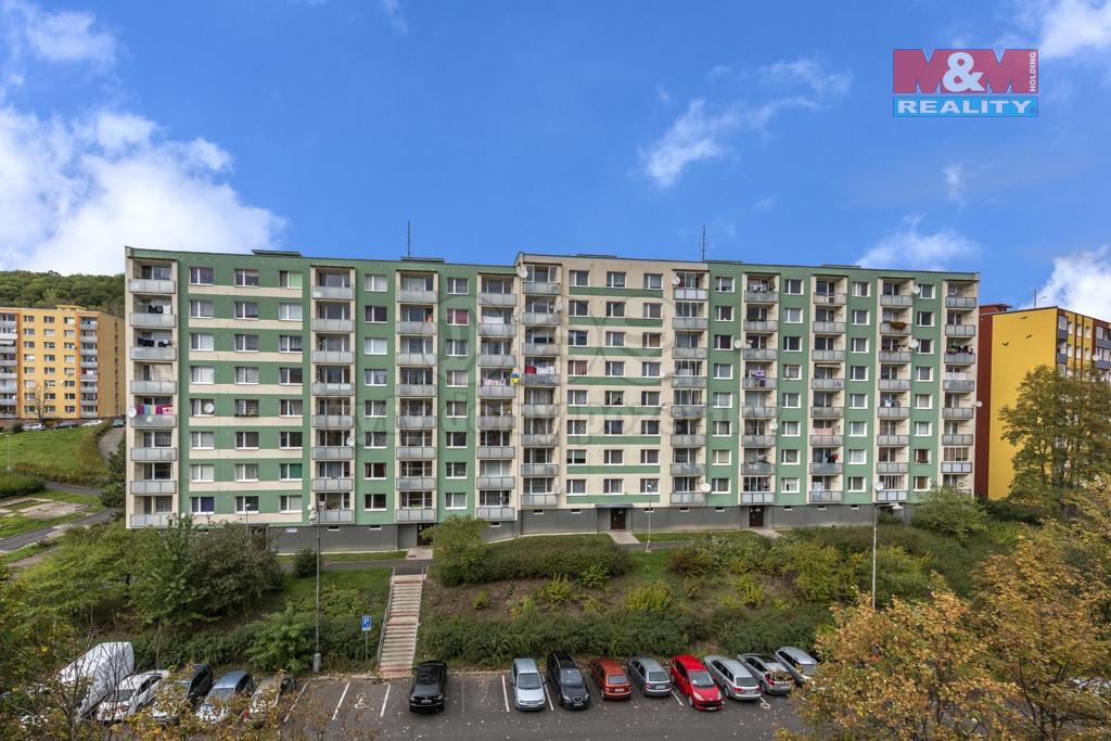 Prodej bytu 1+1, 35 m², DV, Jirkov, ul. Pionýrů
