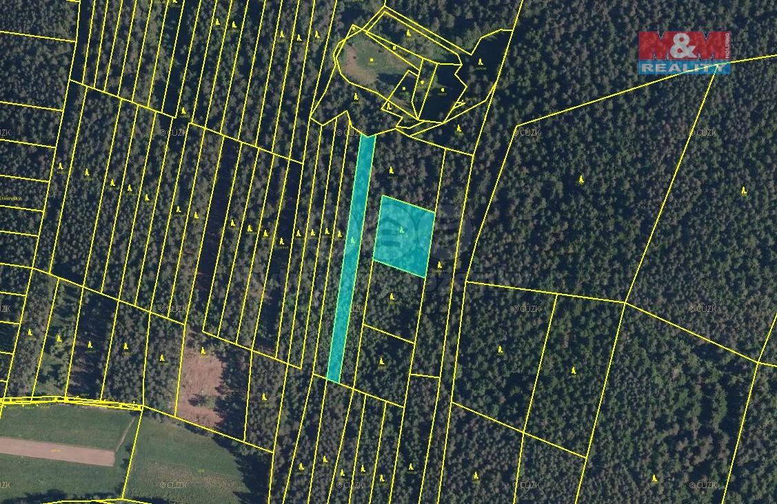 Prodej, les, Čkyně, 4162 m2