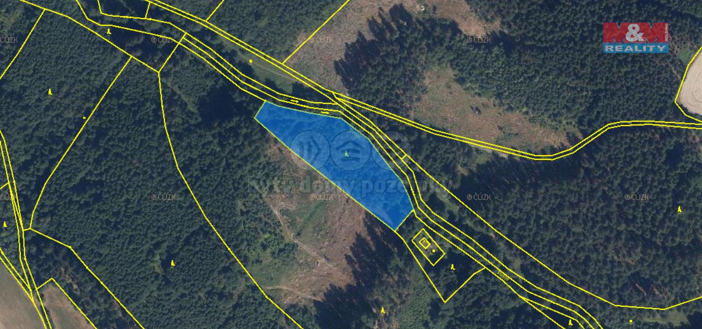 Prodej lesa, 5942 m², Velké Petrovice
