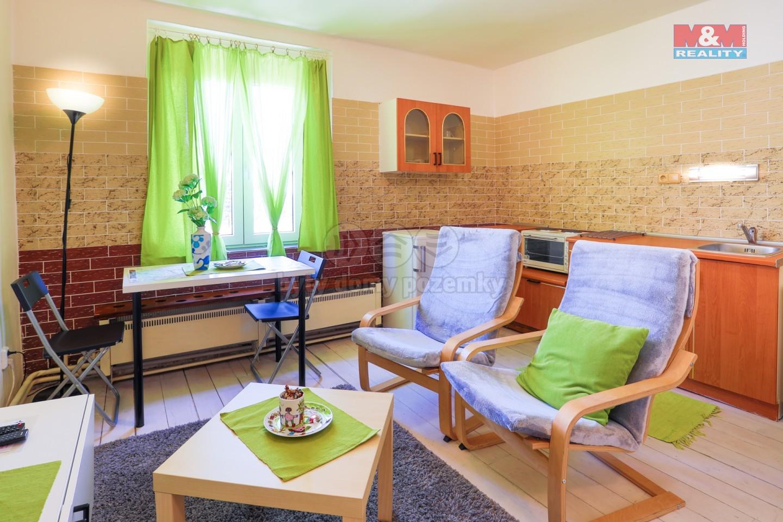 Pronájem bytu 1+kk, 40 m², Karlovy Vary, ul. Sopečná