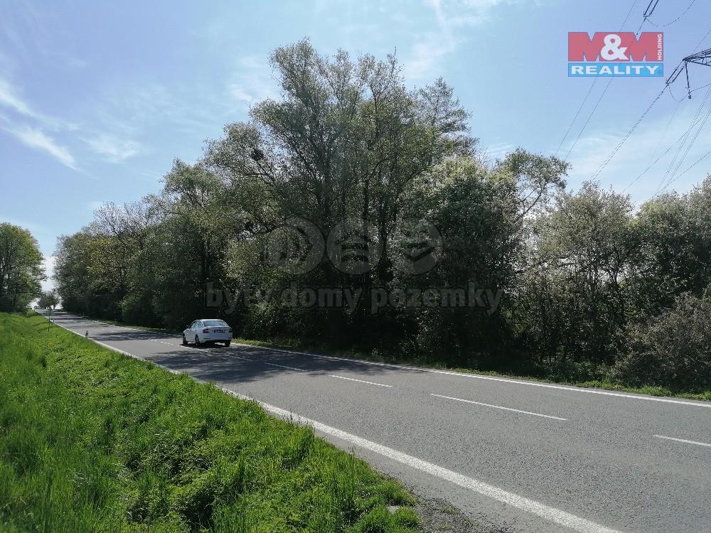 Prodej lesa, 3441 m², Kunín