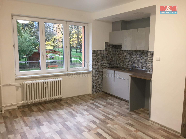 Pronájem bytu 1+kk, 25 m², Ostrava, ul. Mongolská