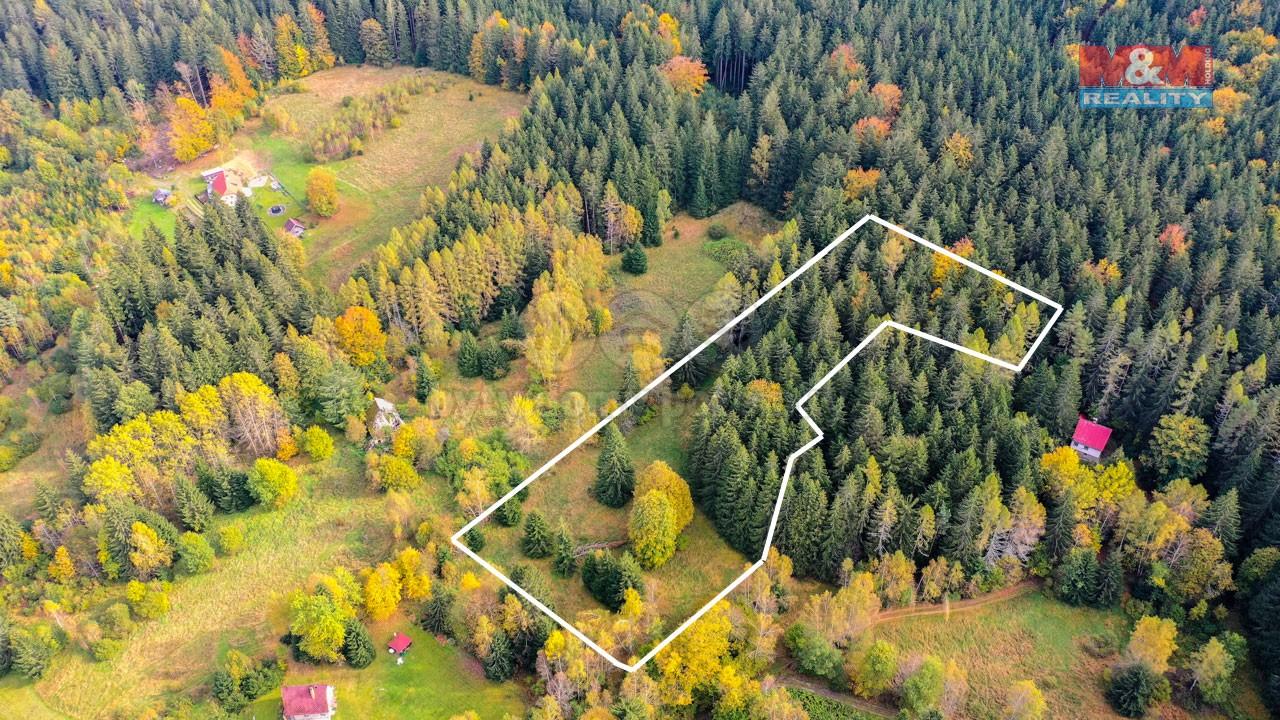Prodej pozemku k bydlení, 6612 m², Loučovice - Kapličky
