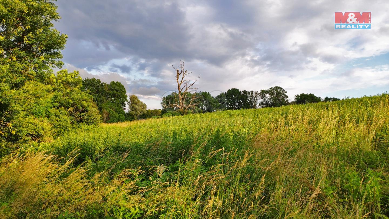 Prodej pozemku k bydlení, 3300 m², Polom
