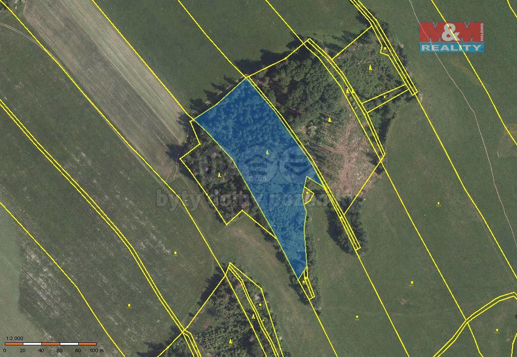 Prodej lesa, 11789 m², Oborná
