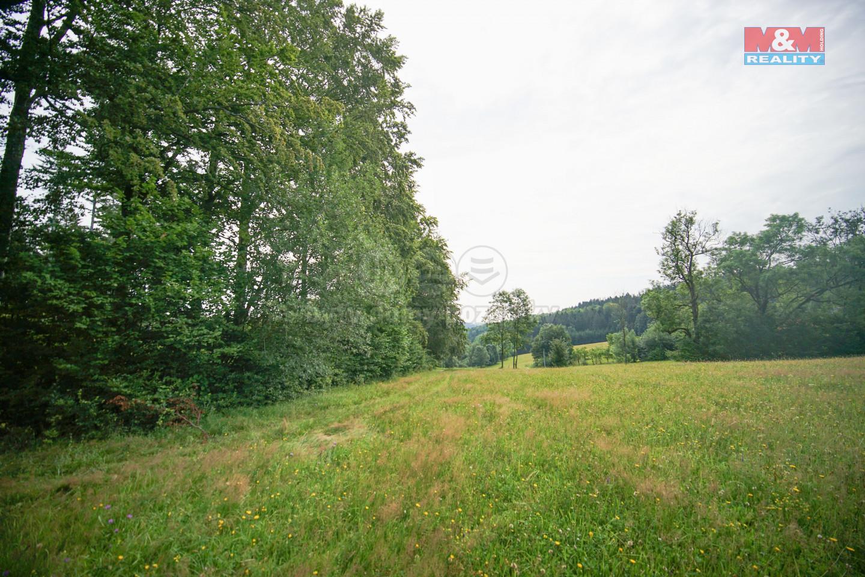 Prodej lesa, 14709 m², Štíty - Cotkytle