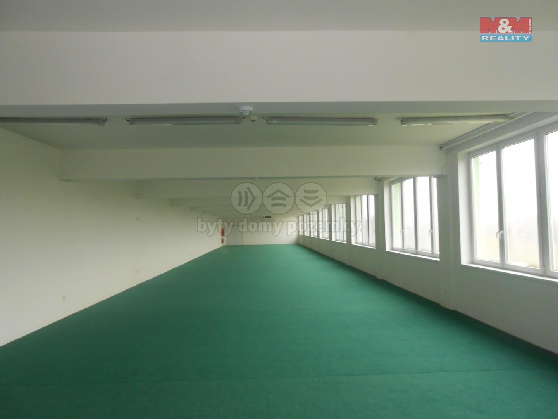 Pronájem obchodního objektu, 600 m², Týniště nad Orlicí