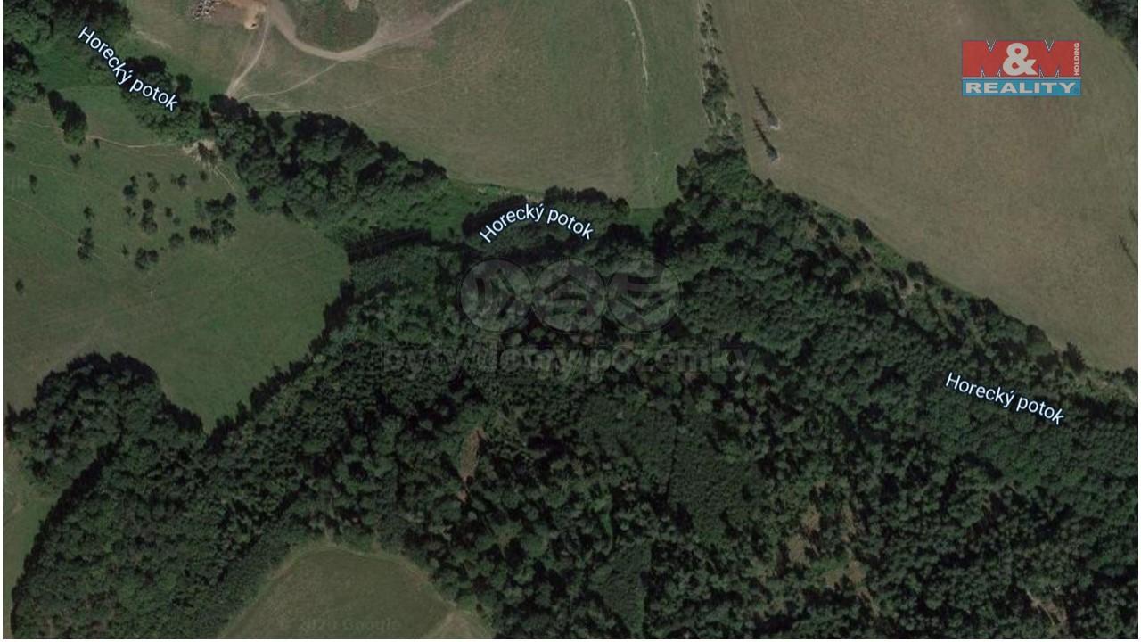 Prodej lesa, 9755 m², Velké Heraltice