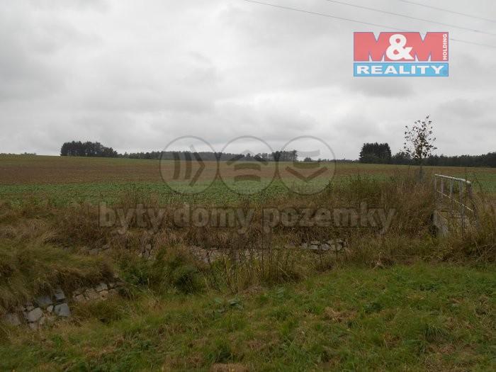 Prodej pozemků, 30131 m², Ledenice, ul. Okružní