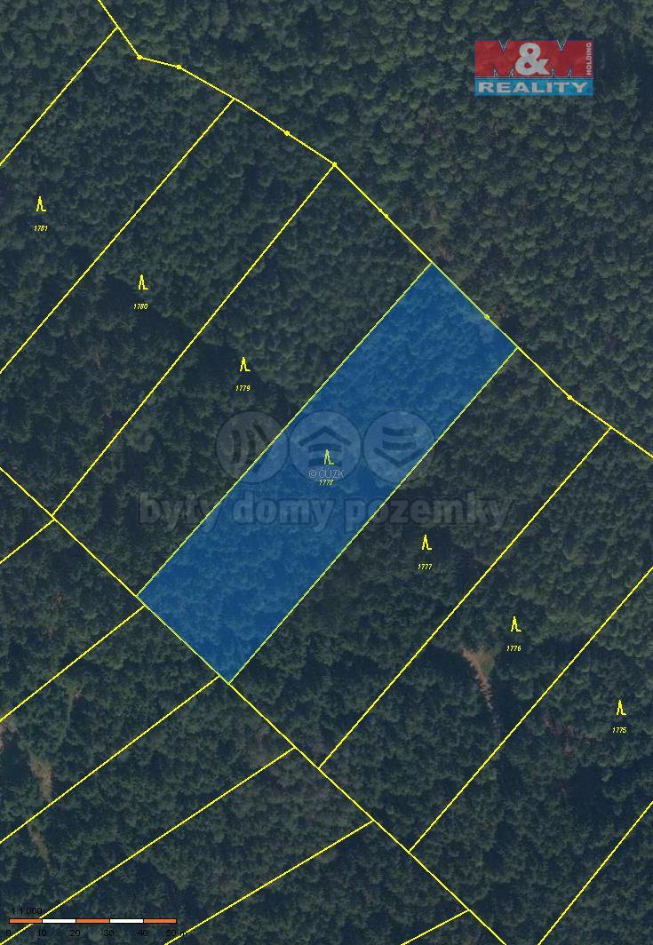 Prodej lesa, 4891 m², Jevíčko