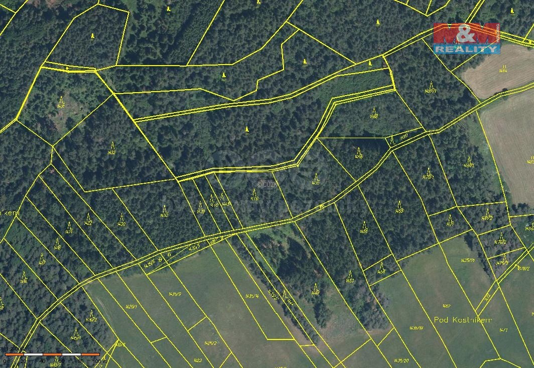 Prodej lesa, 3204 m², Nezamyslice