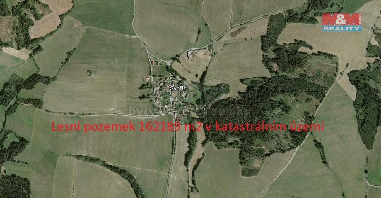 Prodej lesa v Jistebnicích, 162189 m²