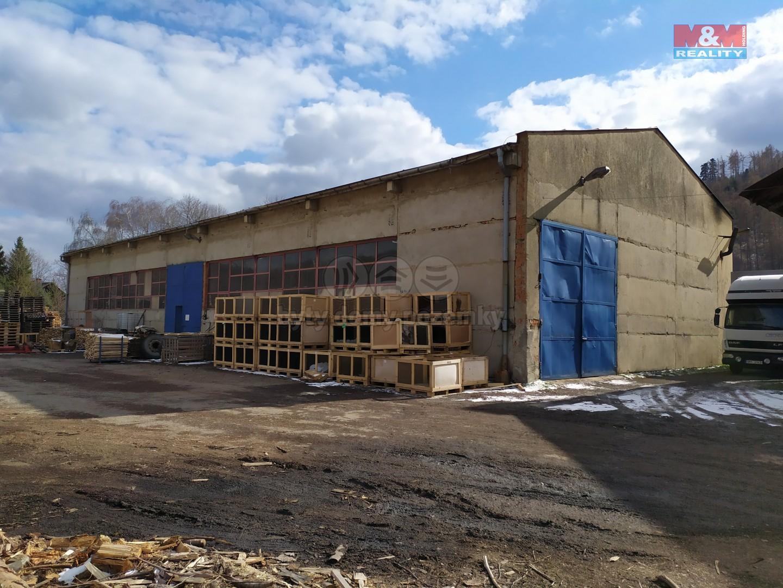 Pronájem výrobního objektu, 646 m², Město Albrechtice