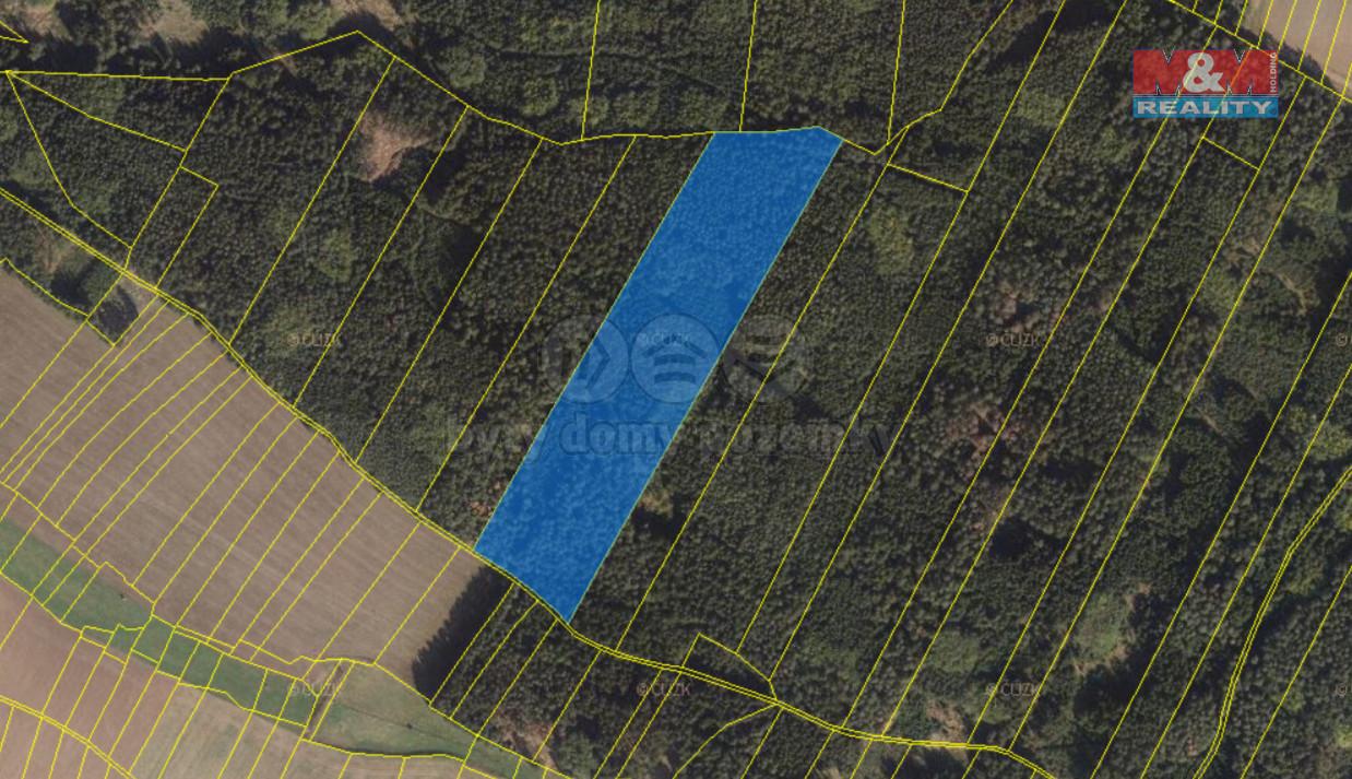 Prodej lesa, 37063 m², Blízkov