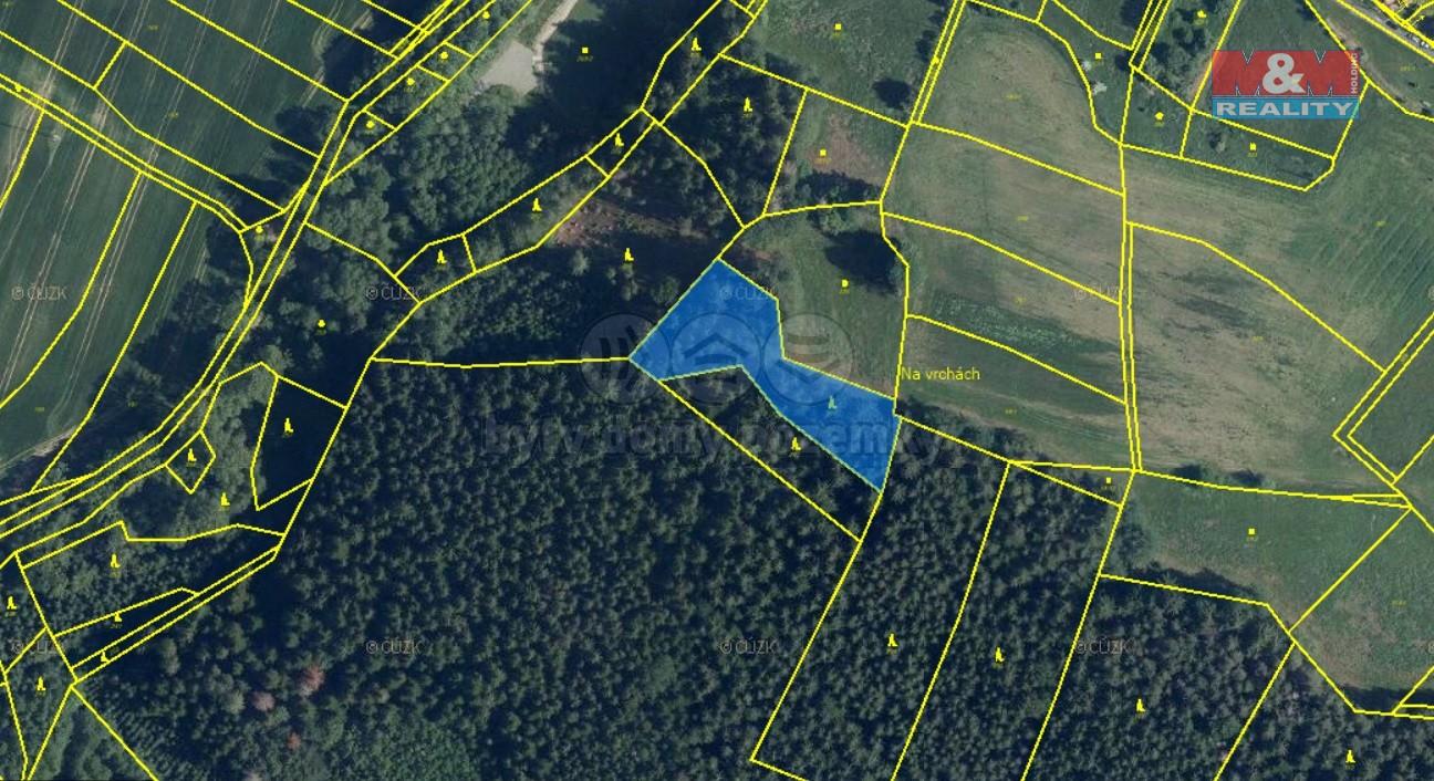 Prodej lesa, 2980 m², Oplany
