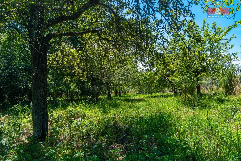 Prodej pozemku k bydlení, 3175 m², Heřmaničky